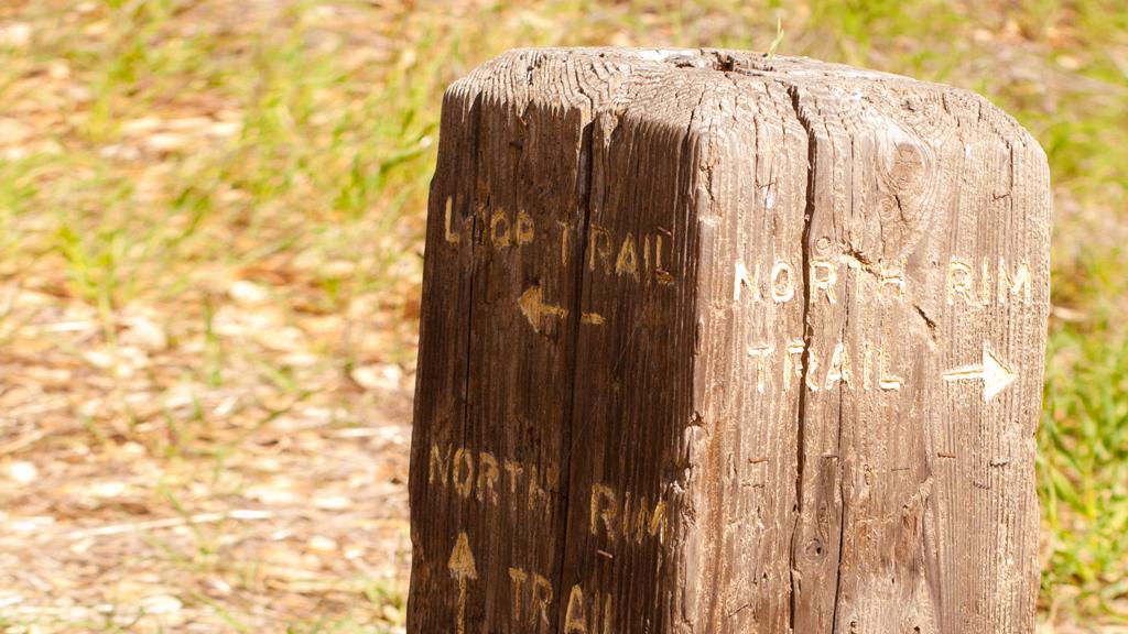 Photography | Alum Rock Park | Trail Marker