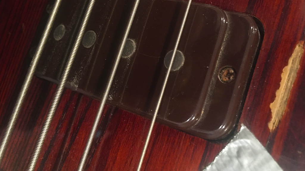 Photography | Macro Views - Ibanez Bass - Strings and Pickup
